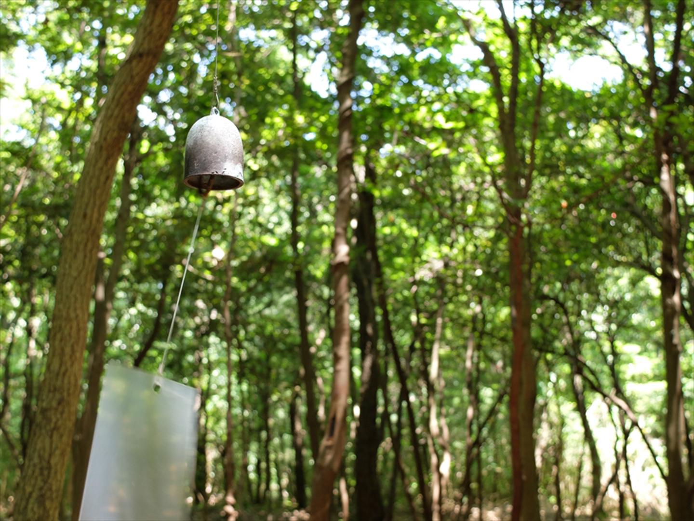 la forêt des murmures art benesse art site naoshima